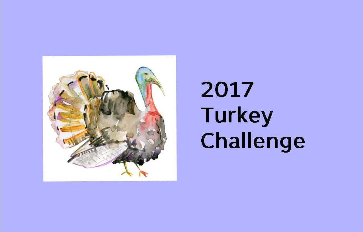 Turkey graphic 3.jpg